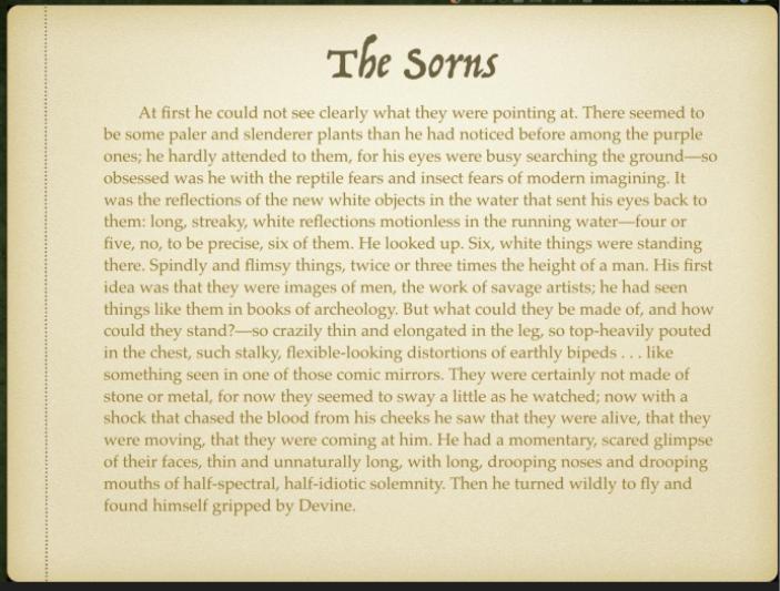 The Sorns
